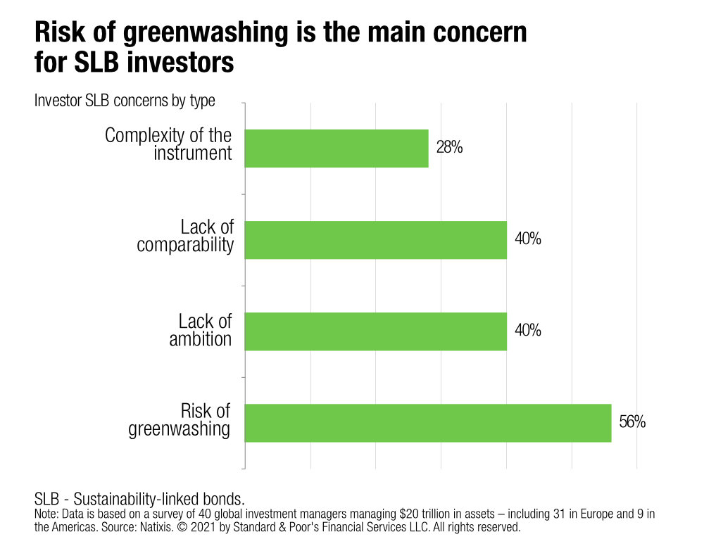 S&P says greenwashing fears overstated